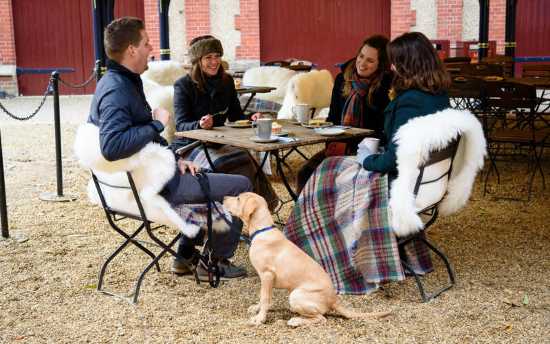 Hygge-stables-coffee-dogs-cumberbatch-3000x1875