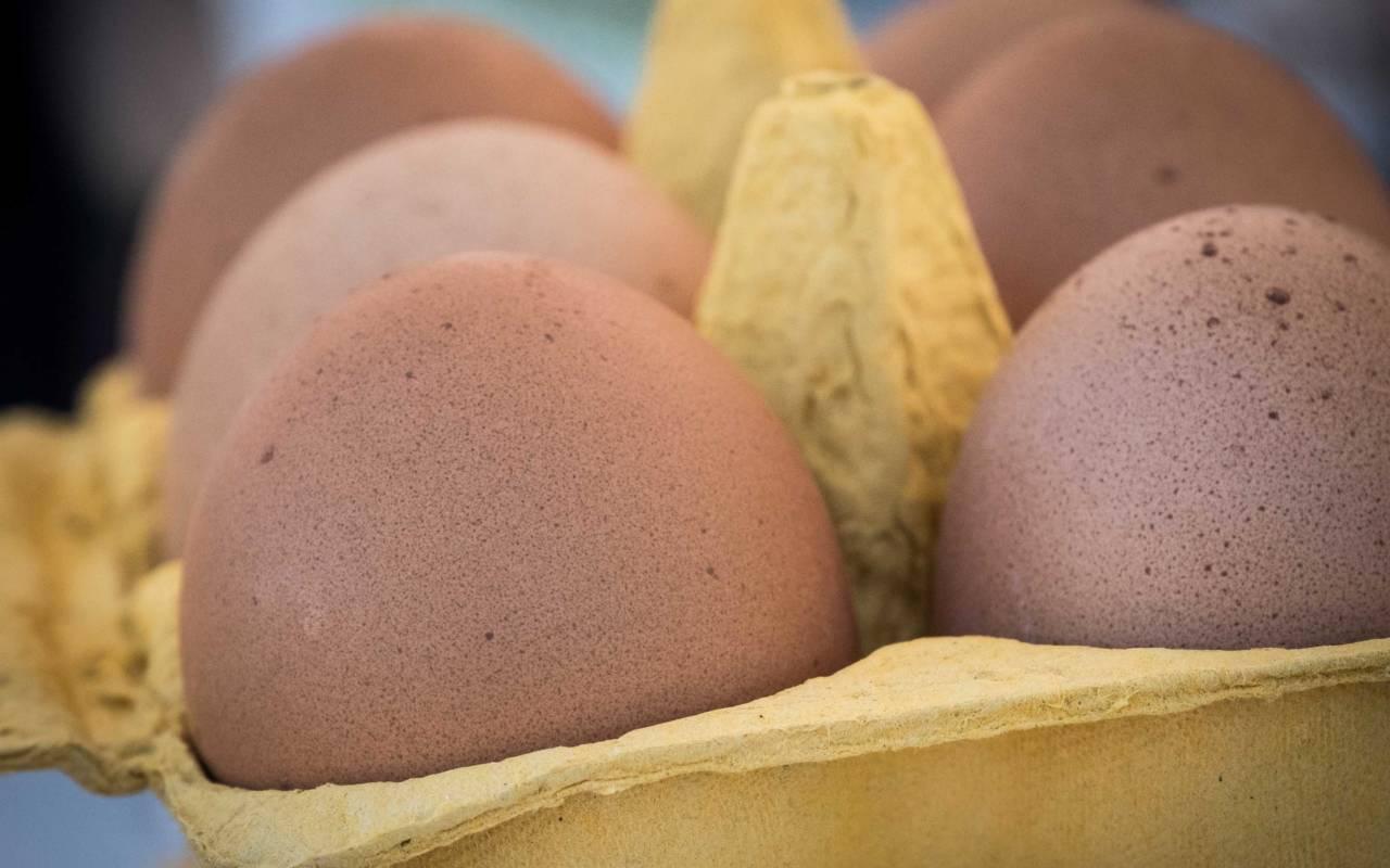 Eggs, Artisan Food Market