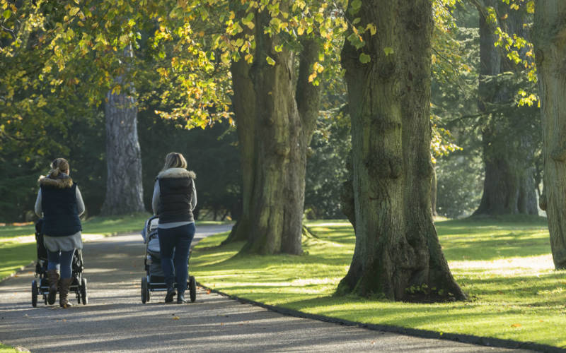 autumn-winter-walks-mums-buggies-Chris-Lacey-3000-1875