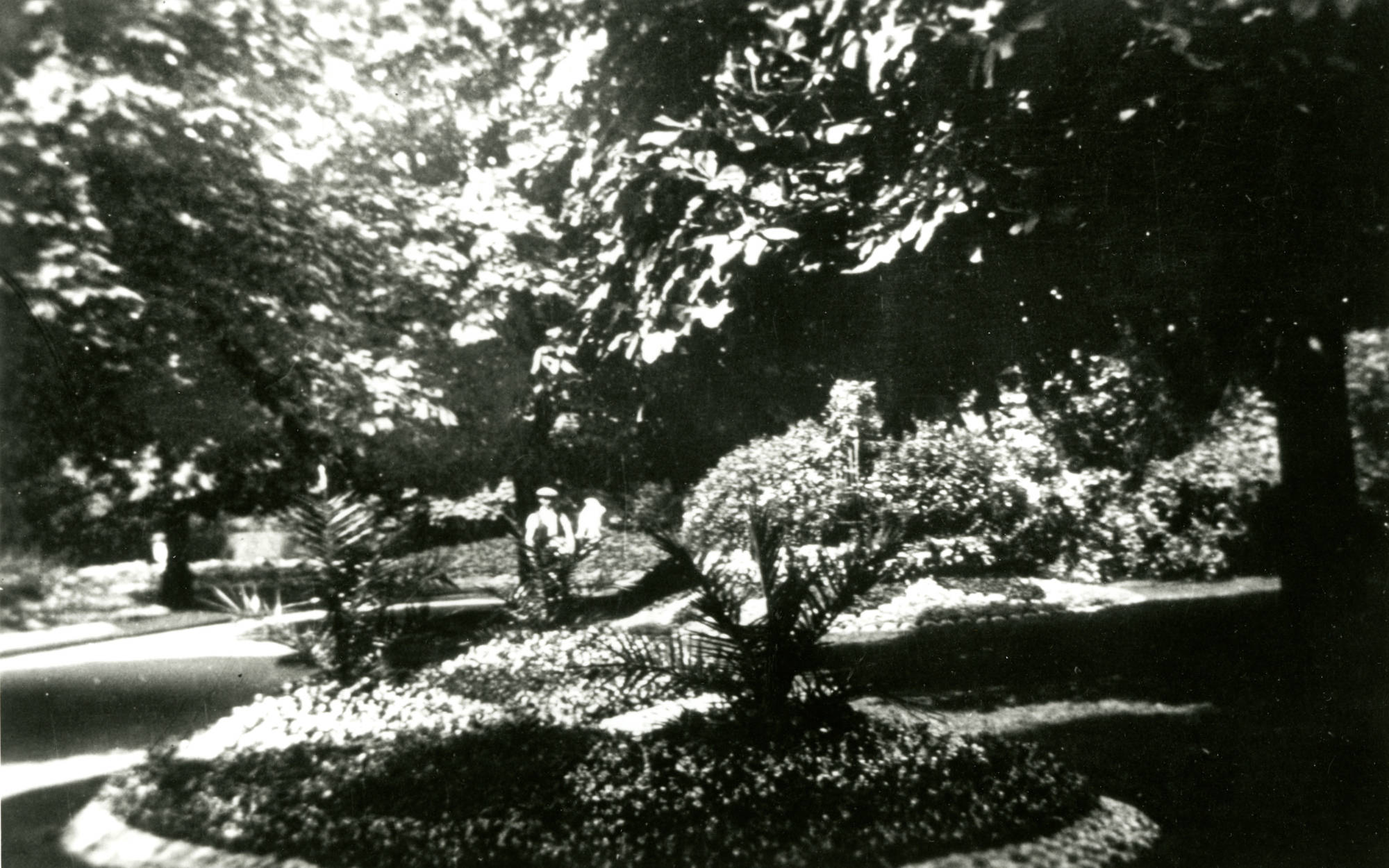 Late 19th century view of the Aviary garden looking North from the top of Wildflower Valley