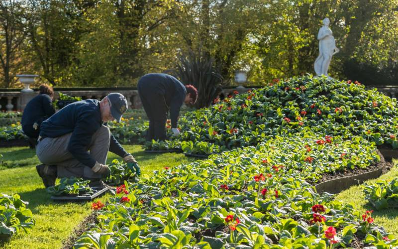 Gardeners at work on the Parterre