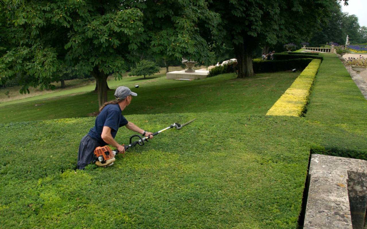Gardener trimming hedge on the Parterre