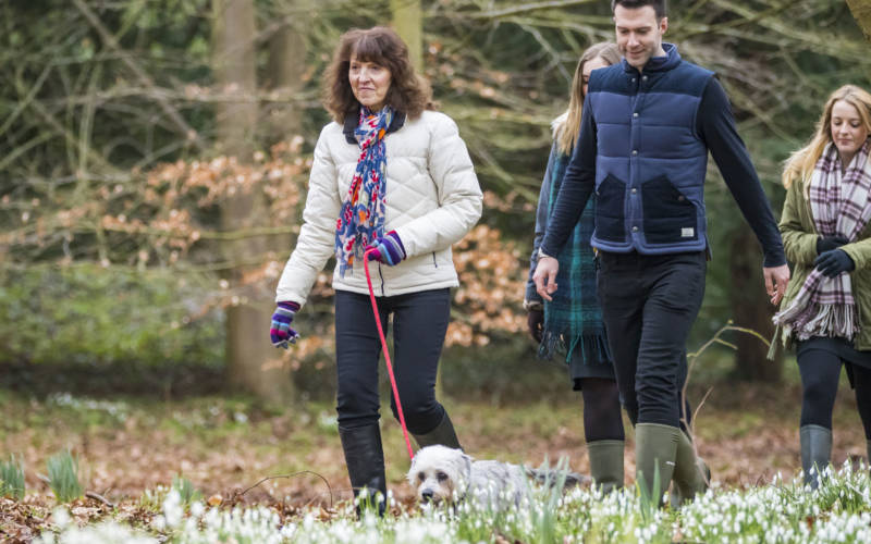 Winter-walk-National-Trust-Images-Chris-Lacey-3000-1875
