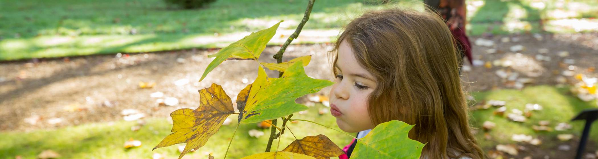 Girl blowing on leaf