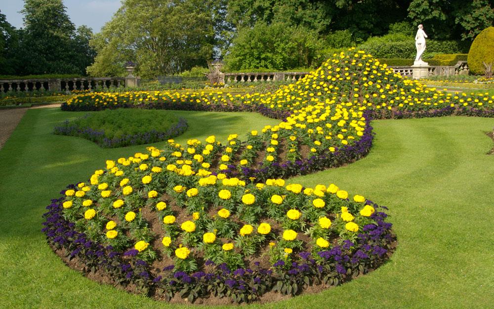 Yellow ribbon bedding