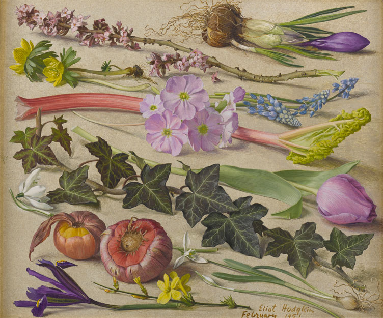 Painting of a selcetion of fruit and flowers