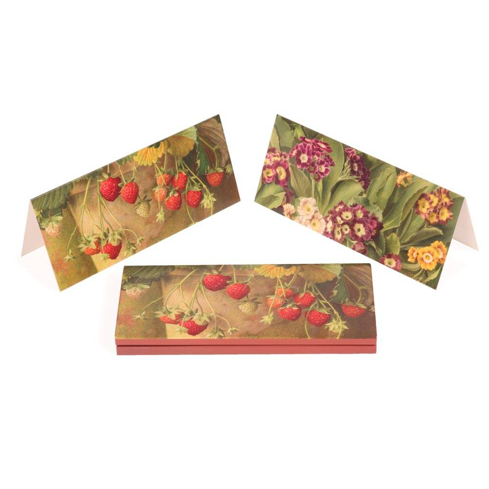 Notecards with fruits and flowers design by Eliot Hodgkin