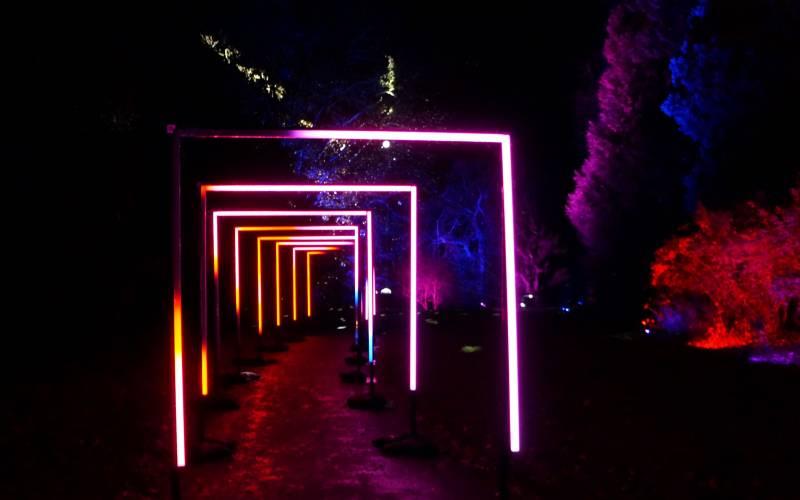 Aviary-gardens-light-trail-Christmas-at-Waddesdon-Manor-Yes-Events-Ltd-2100-1313