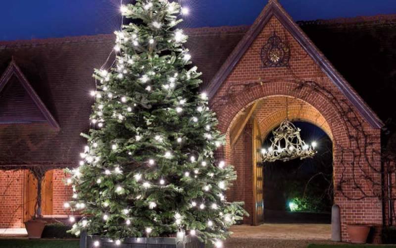 Dairy-Christmas-Tree-1000x625