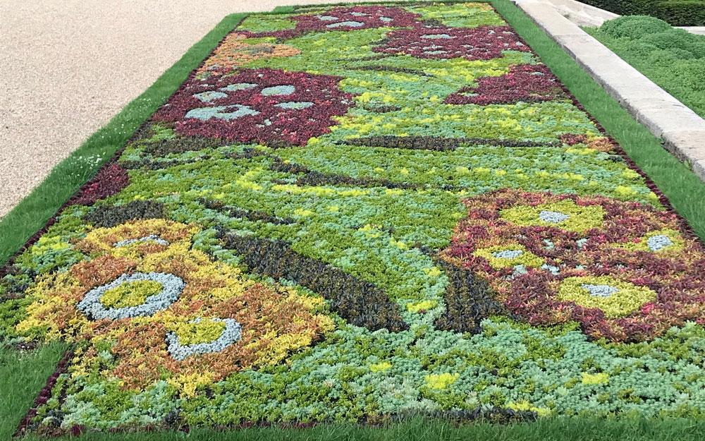 Auricula inspired carpet bedding