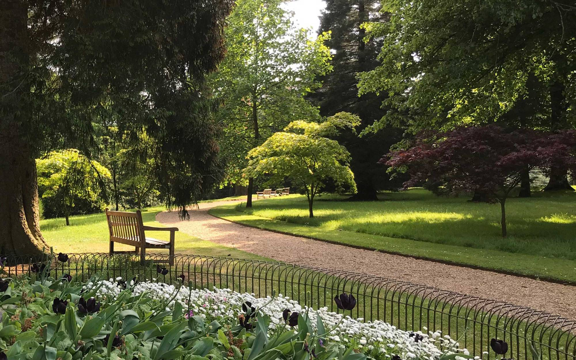 View of half moon path with trees and a bench