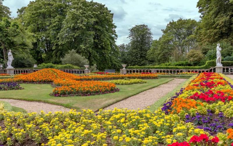 garden-parterre-summer-1000-625-hugh-mothersole