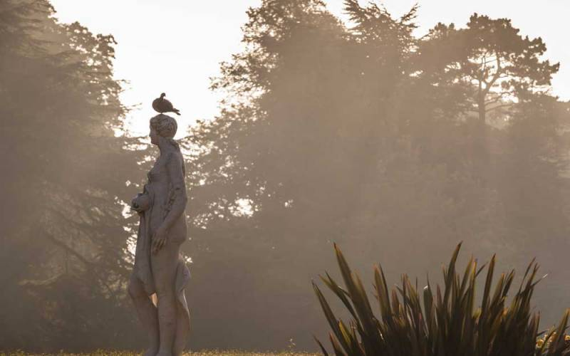 Autumn, gardens-autumn-pigeon-statue-1000-625-chris-lacey