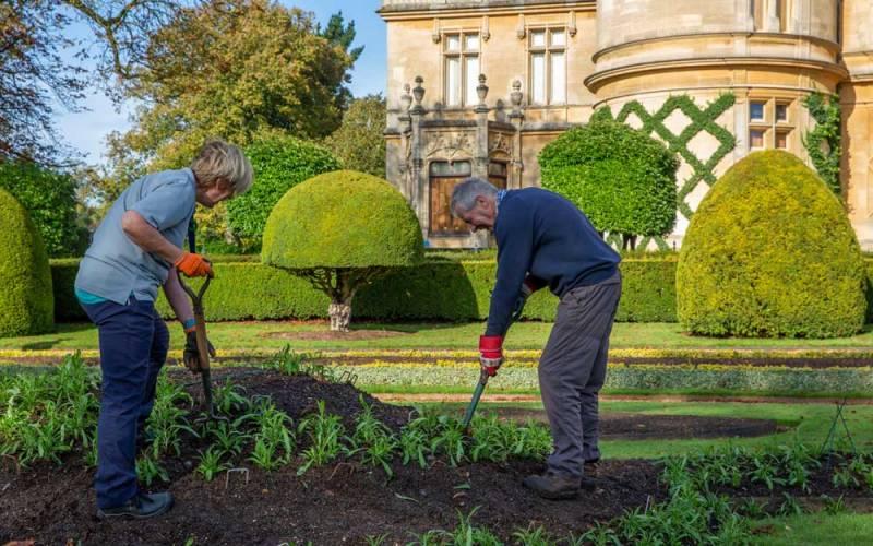 Volunteer-with-us-gardening-8