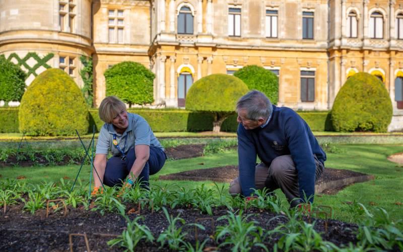 Waddesdon-staff-volunteers-gardens-gardening-parterre-1000-625