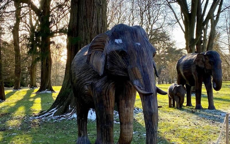 Elephant Family at Waddesdon (c) Waddesdon, A Rothschild House & Gardens. Photo Pippa Shirley
