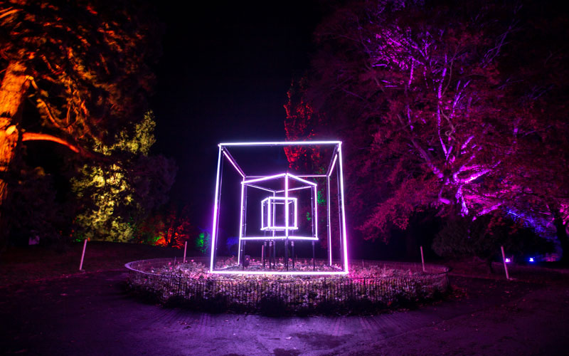 Cube feature on the Winter Light trail at Waddesdon