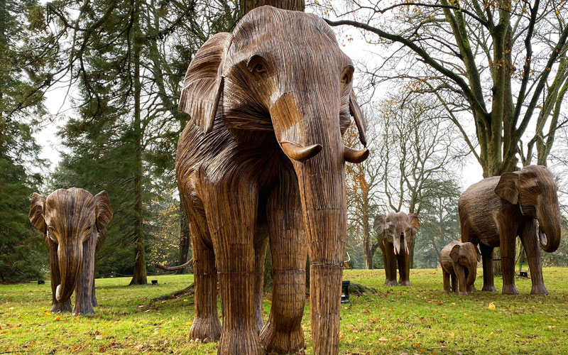 Elephant Family at Waddesdon