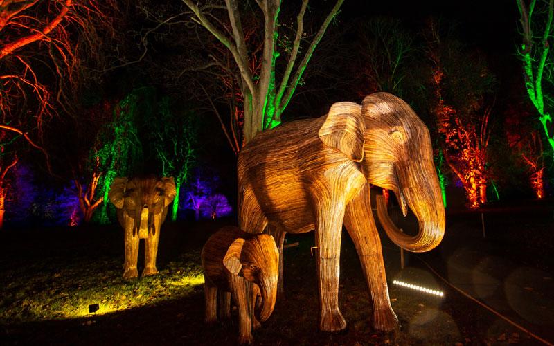 Elephant Family illuminated at Waddesdon