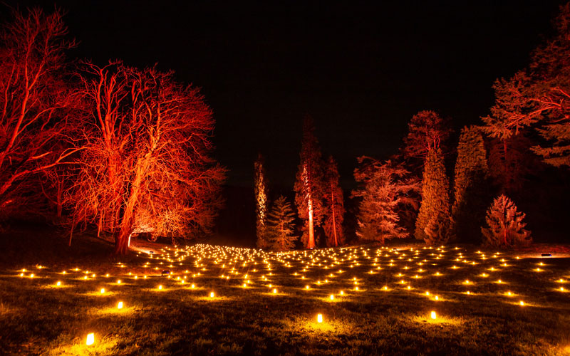 Flame Valley on the Winter Light trail at Waddesdon