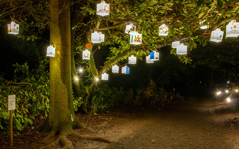 When-You-Wish-Upon-A-Star-Trail-Christmas-at-Waddesdon-2020-Hugh-Mothersole-800-500(2)