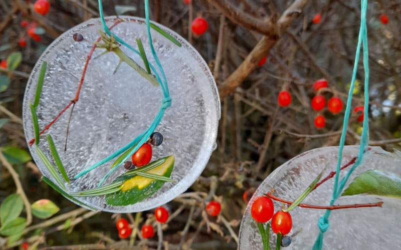 learning-resources-families-hanging-ice-decorations-800-500