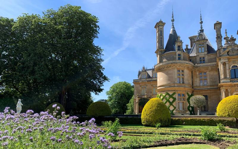 Manor-and-Parterre-bedding-June-2021-2100-1313
