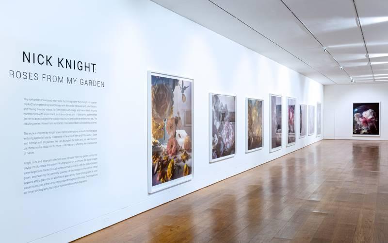 Nick-Knight-installation-(c)-Waddesdon-Image-Library,-Sophia-Cliffe