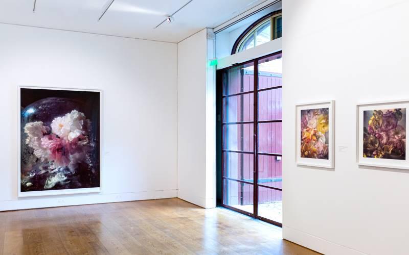 Nick-Knight-installation-(c)-Waddesdon-Image-Library,-Sophia-Cliffe1