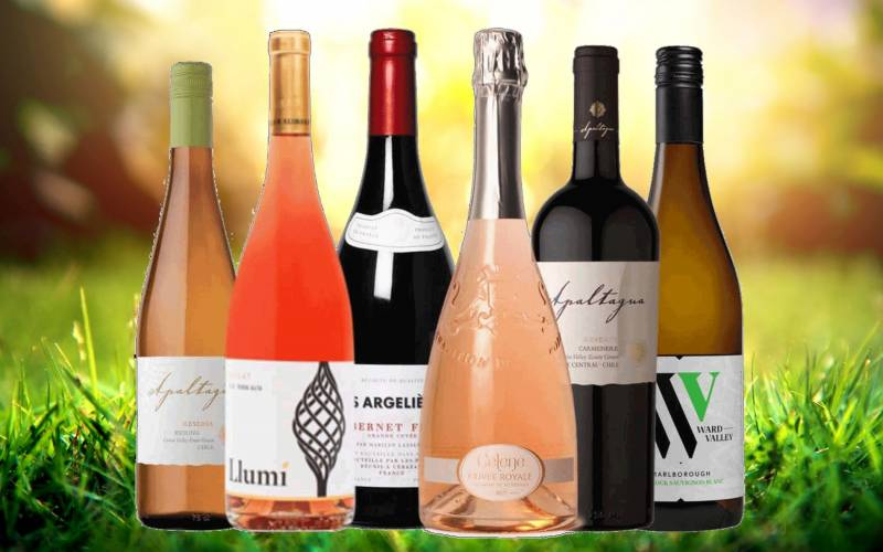 Summer wine case web image