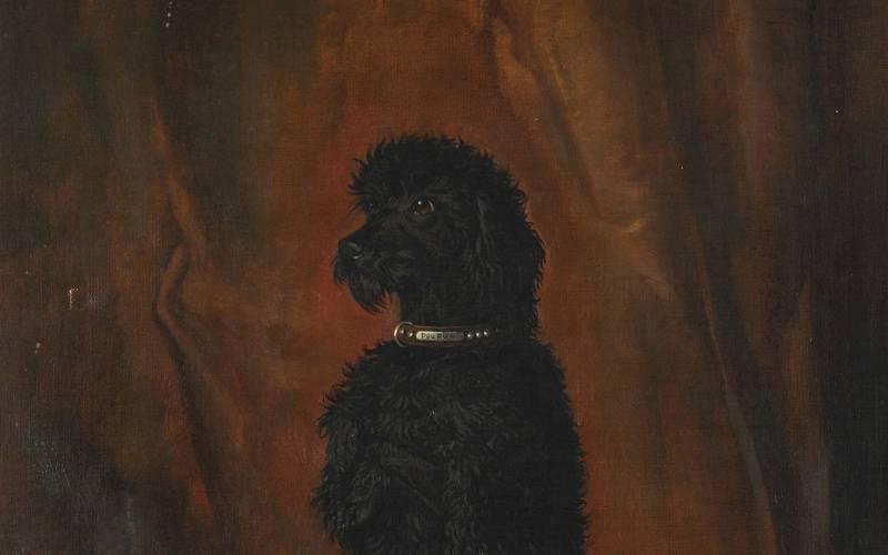 Dogs of Waddesdon